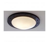 Потолочный светильник  Robers DE2552  Черно-серый (пр-во Германия)