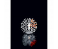 Настольная лампа Pallucco COR 001 019341  Белый матовый (пр-во Италия)